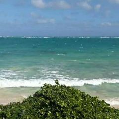 白沙灘用戶圖片