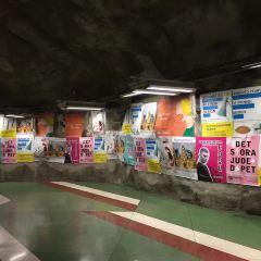 T-CENTRAL站用戶圖片