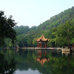 龍泉公園用戶圖片