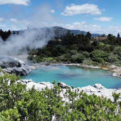 華卡雷瓦雷瓦地熱保護區用戶圖片