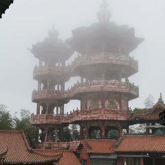 長寧龍吟寺用戶圖片