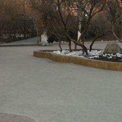 칭빈 공원 여행 사진