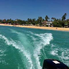 Dalawella Beach用戶圖片