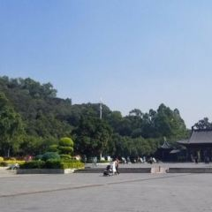 Qiling Forest Park User Photo