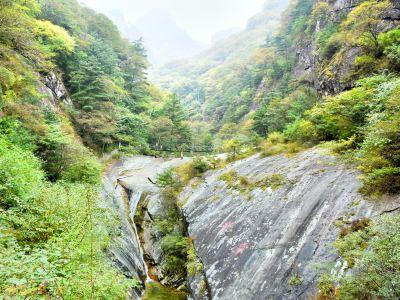 주췌 국가삼림공원