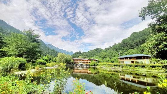 上壩河國家森林公園