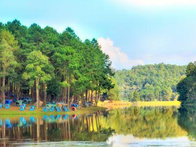 Pang Tong Under Royal Forest Park 2 (Pang Ung)