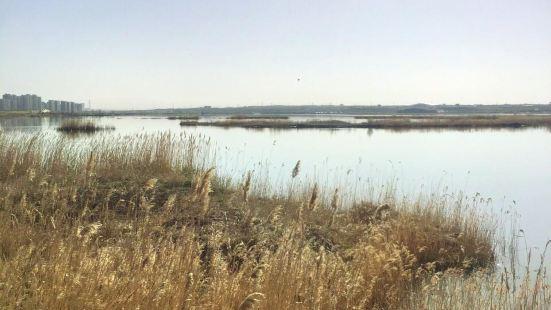 紅海子濕地公園