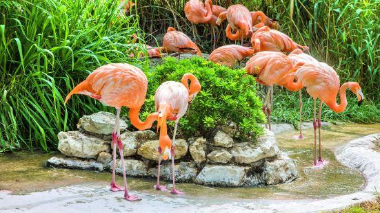 리스본 동물원
