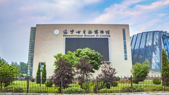 랴오닝 고생물 박물관