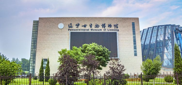 Paleontological Museum of Liaoning