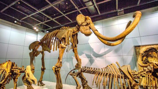 Zhejiang Natural History Museum
