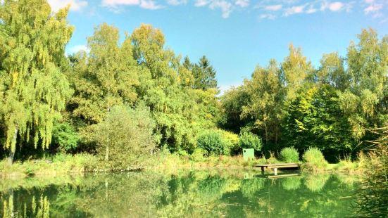 維施琳根森林公園