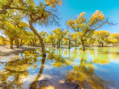 내몽고아랍선사막국가지질공원