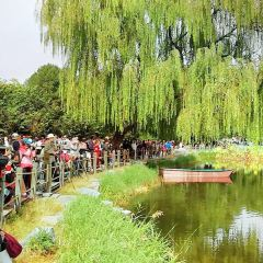 Baiyangdian Dream Water Village User Photo