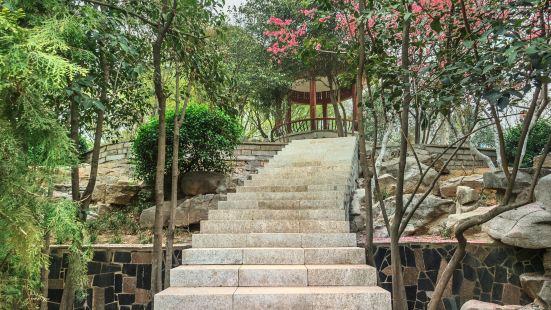 Shunyu Park