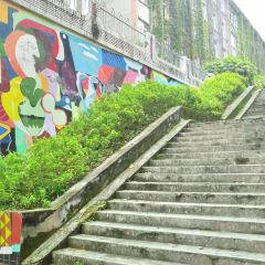 Leshanshifan College User Photo