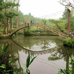 대학연못 여행 사진