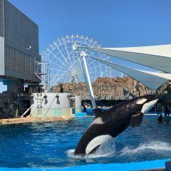 名古屋港水族館用戶圖片