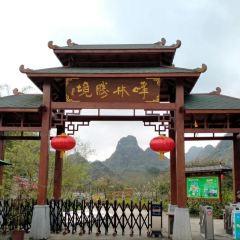 Yingxi Fenglin Corridor User Photo