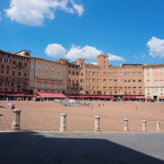 Piazza del Campo User Photo