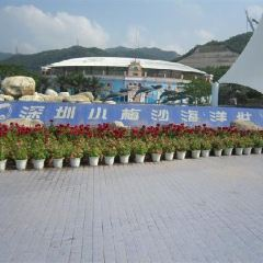 Xiaomeisha Sea World User Photo