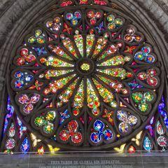 Basilica User Photo
