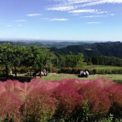 Naitai Kogen Farm User Photo