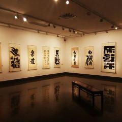 미술 박물관 여행 사진