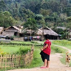 Doi Pui Mong Hill Tribe Village User Photo