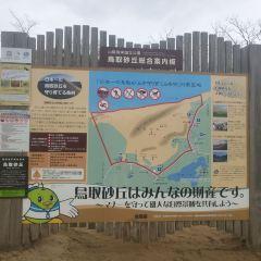 돗토리 사구 여행 사진