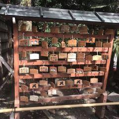 熊野神社用戶圖片