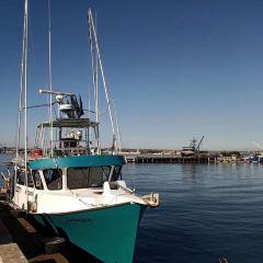聖地亞哥海港村用戶圖片