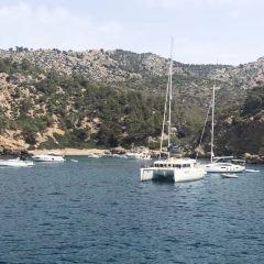 Mallorca SUP Rental用戶圖片
