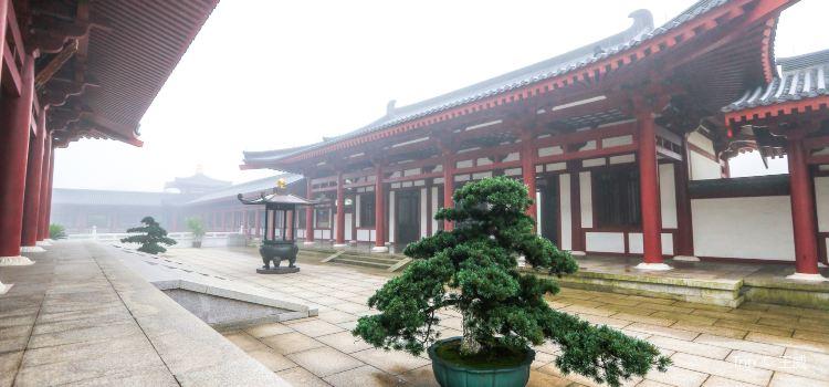 中國佛學院普陀山學院3