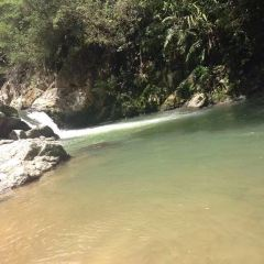 虎伯寮自然保護區用戶圖片