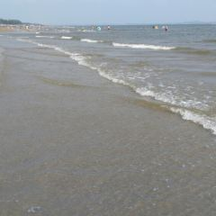 Wanwei Golden Beach User Photo