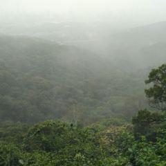 白雲山用戶圖片