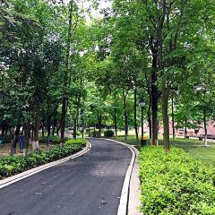 탑자산 공원 여행 사진