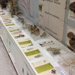 Siriraj Medical Museum User Photo