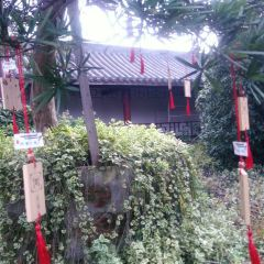 江淮文化園用戶圖片