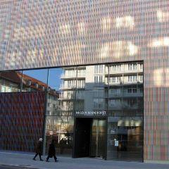 Museum Brandhorst User Photo