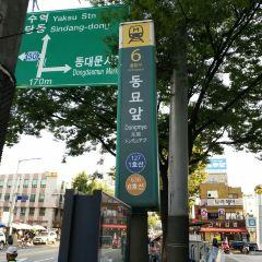 테지움 서울 여행 사진