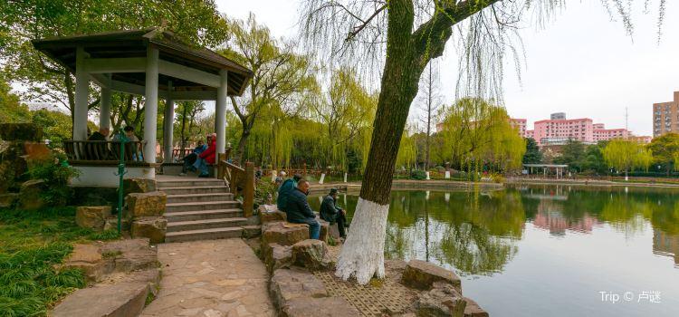 Lingnan Park2