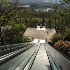 Niushou Mountain Cultural Tourism Zone User Photo