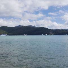 聖靈島用戶圖片