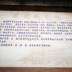通京古橋用戶圖片