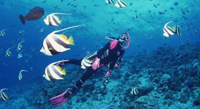 William Diving