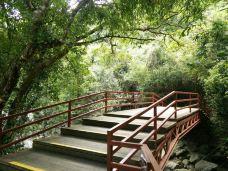 五指山热带雨林风景区-五指山-萨莫拉何可纲