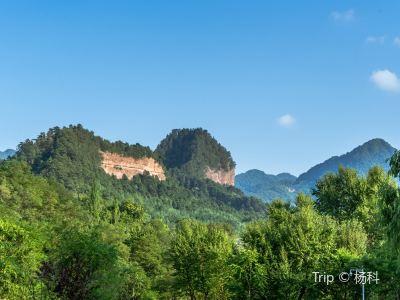 Maiji Mountain Scenic Area
